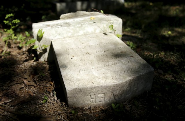 The toppled gravestone of former FBI Director J. Edgar Hoover's dogs is seen at the Aspin Hill Memorial Park in Aspen Hill, Maryland August 25, 2015. (Photo by Gary Cameron/Reuters)