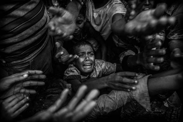 A Rohingya refugee boy cries as he fights his way in the crowd to get food aid from a local NGO at the Balukali refugee camp on September 18, 2017 in Cox's Bazar, Bangladesh. (Photo by Kevin Frayer/Getty Images)