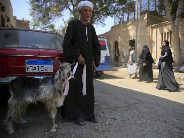"""A man who rears his only goat waits for customers at an old cattle market named """"Al Emam Market"""" ahead of the Muslim sacrificial festival Eid al-Adha in Cairo, Egypt, September 19, 2015. (Photo by Amr Abdallah Dalsh/Reuters)"""