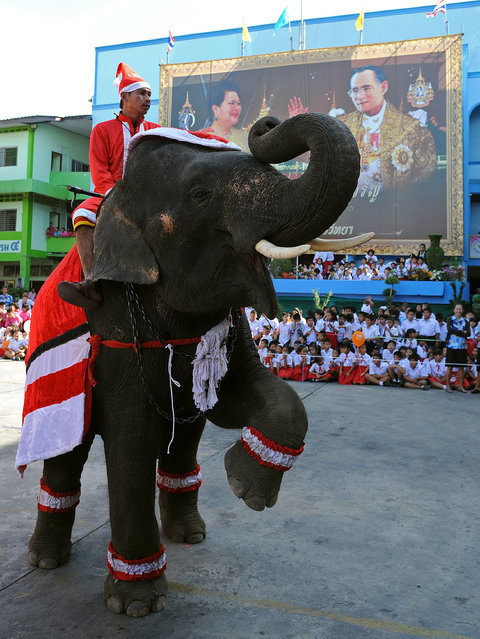 An elephant dressed in a Santa Claus costume performs for students ahead of the Christmas festival at a school in Ayutthaya province on December 23, 2011. The event was held as part of a campaign to promote Christmas in Thailand. AFP PHOTO/Pornchai  KITTIWONGSAKUL (Photo credit should read PORNCHAI KITTIWONGSAKUL/AFP/Getty Images)
