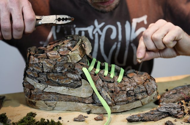 "French artist Christophe Guinet, also known as ""Mr Plant"", works on his plant shoe creation ""Wood"", part of the artistic project ""Just Grow It"", in his art gallery in Marseille, November 25, 2014. Guinet transforms name-brand Nike sneakers, cult footwear for urban youth, into vegetable compositions, creating a collection of artwork with trainers modified with tree bark, foam and flowers. (Photo by Jean-Paul Pelissier/Reuters)"