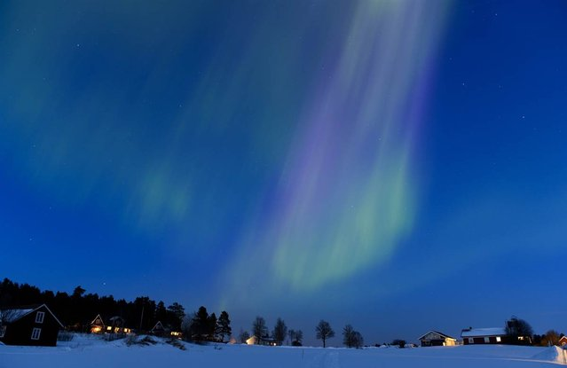 The northern lights shimmer at twilight on March 17, 2013, between the towns of Are and Ostersund in Sweden. (Photo by Jonathan Nackstrand/AFP Photo)