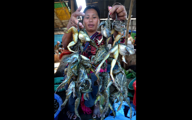 Indian saleswoman shows frogs for sale in market Dimapur, India. (Photo by AFP Photo)