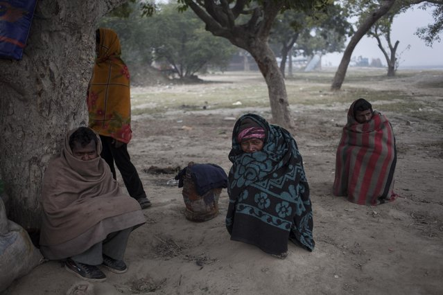 Indian homeless men wrapped in blankets sit under a tree on a cold winter day in New Delhi, India, Wednesday, January 14, 2015. (Photo by Tsering Topgyal/AP Photo)