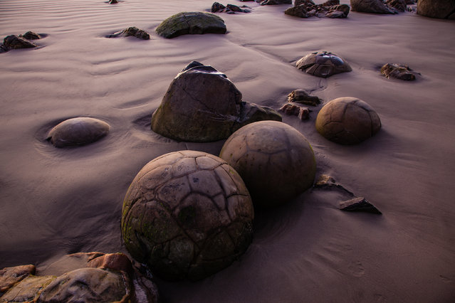 """Giant Marbles"". Like ancient giant marbles the Moeraki Boulders are strewn across Koekohe Beach on New Zealand's South Island. The light of sunrise casts an otherwordly hue on these rock formations. (Photo and caption by Marcus Haid/National Geographic Traveler Photo Contest)"