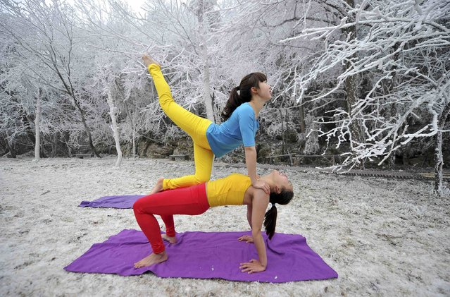 Two women practice yoga next to trees covered in frost at the Tianmen Mountain resort in Zhangjiajie, Hunan province, January 31, 2015. (Photo by Reuters/China Daily)