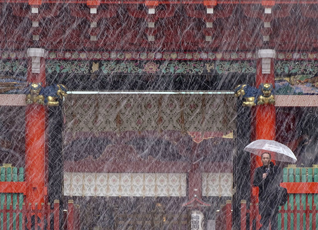 A man stands near the gate in the snow at Kanda Myojin shrine in Tokyo, Thursday, November 24, 2016. (Photo by Eugene Hoshiko/AP Photo)
