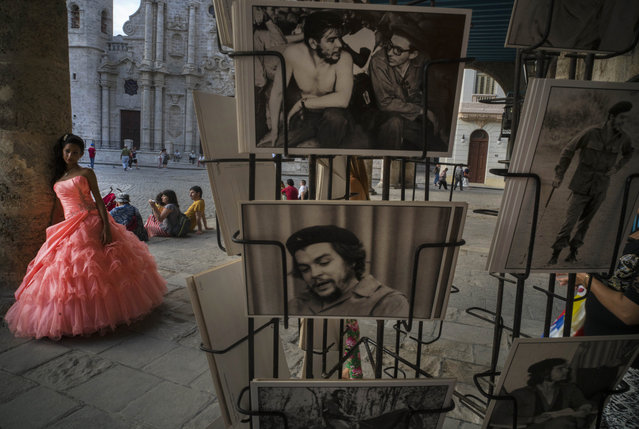 "In this November 29 2015 photo, a quinceanera poses during her photo session by postcards of Cuban revolutionary leader Ernesto ""Che"" Guevara near the Catedral in Havana, Cuba. (Photo by Ramon Espinosa/AP Photo)"