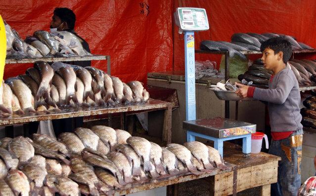 A man sells fish at a market in Islamabad, Pakistan, 08 December 2020. (Photo by Sohail Shahzad/EPA/EFE)