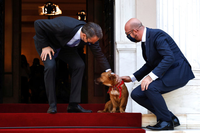 Greek Prime Minister Kyriakos Mitsotakis accompanied by his dog Peanut welcomes European Council President Charles Michel at the Maximos Mansion in Athens, Greece, May 28, 2021. (Photo by Alkis Konstantinidis/Reuters)