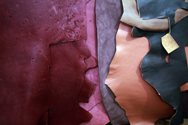 Various type of leather sheets as a raw material for bags and wallets. (Photo by Rezza Estily/JG Photo)