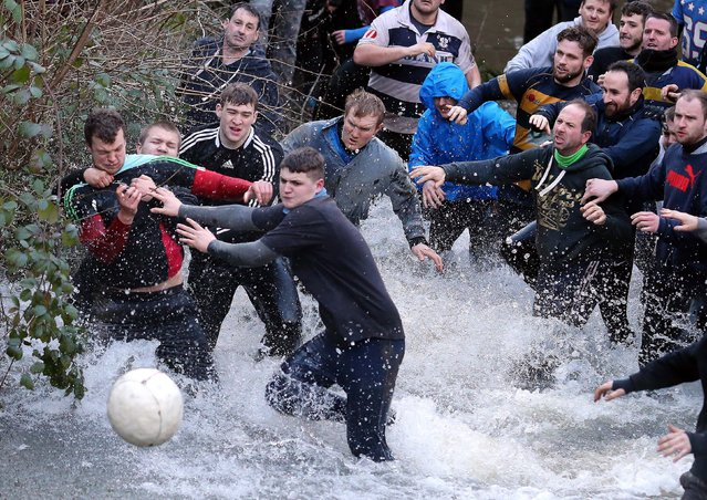 The ball breaks from the hug in a ditch during the annual Shrovetide football match in Ashbourne, Derbyshire, central England, 09 February 2016. The game which dates back to the 17th century is played by two teams, the Up'ards and the Down'ards, the aim of the game is to score by tapping the ball three times on stone goal plinths which are three miles apart on the banks of the River Henmore. (Photo by Nigel Roddis/EPA)