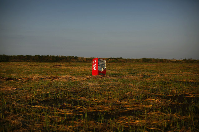 A vending machine, brought inland by a tsunami, is seen in a abandoned rice field inside the exclusion zone at the coastal area near Minamisoma in Fukushima prefecture September 21, 2013. (Photo by Damir Sagolj/Reuters)