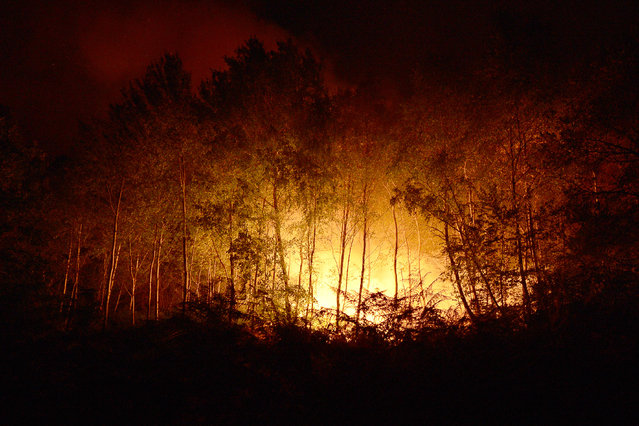 A wild fire near Bordeaux in the town of Pessac, France, July 25, 2015. 180 hectares of pine forest have been destroyed. The fire has mobilized more than 150 firefighters and 400 to 450 people were evacuated. (Photo by Caroline Blumberg/EPA)