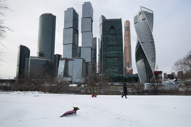 A woman walks her dogs with Moscow City skyscrapers in the background in Moscow, Russia, Tuesday, March 31, 2020. The Russian capital has woken up to a lockdown obliging most people in the city of 13 million to stay home. The government ordered other regions of the vast country to quickly prepare for the same as Moscow, to stem the spread of the new coronavirus. (Photo by Pavel Golovkin/AP Photo)
