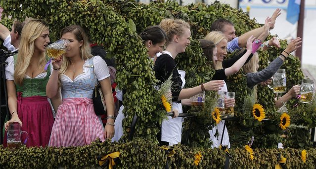 Young woman celebrate the opening of the 181st Oktoberfest beer festival on a decorated horse-drawn carriage in Munich, southern Germany, Saturday, September 20, 2014. (Photo by Matthias Schrader/AP Photo)