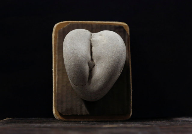 A stone collected and categorised by shape (female genitalia) is seen at the home workshop of Luigi Lineri in Zevio, near Verona, Italy, June 10, 2016. (Photo by Alessandro Bianchi/Reuters)