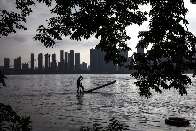 A man stand up paddle board in flooded Jiangtan park caused by heavy rains along the Yangtze river on July 13, 2020 in Wuhan,China.The water level at Hankou station on the Wuhan section of the Yangtze River has reached 28.77 meters, the fourth highest in history. (Photo by Getty Images)