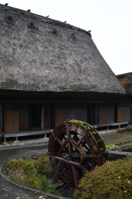 The traditional farm houses at Shirakawa-go, the UNESCO World Heritage site on November 9, 2014 in Shirakawa, Japan. (Photo by Kaz Photography/Getty Images)