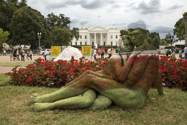A couple blends into White House and its surroundings in Washington DC, US. (Photo by Trina Merry/Caters News)