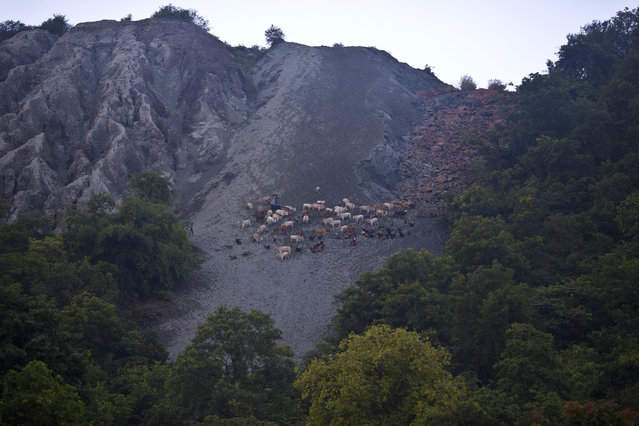 In this September 11, 2014 photo, villagers climb down the side of a hill used earlier as a dumping ground of asbestos waste on  Roro hills in Roro, India. (Photo by Saurabh Das/AP Photo)