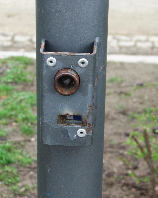 Pole face. (Photo by Lauren Manning)