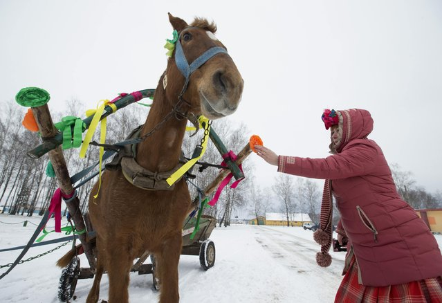 A villager decorates a horse-drawn cart before taking part in Kolyada holiday celebrations, in the village of Martsiyanauka, east of the capital Minsk, January 21, 2015. (Photo by Vasily Fedosenko/Reuters)