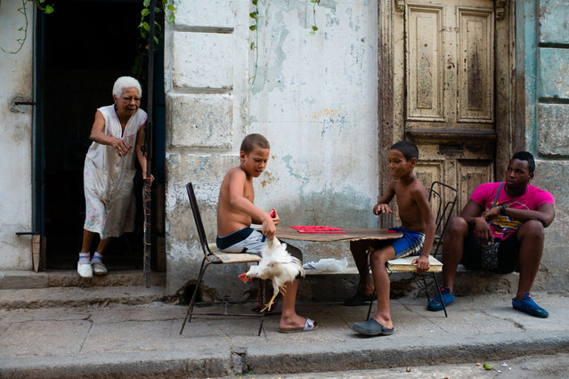 Cruz Rancol, 85, left, chases her chicken after it ran out the door of her Old Havana, Cuba home on the evening of August 4, 2015. Ernesto Solis, 9, left, and Haro Gonzalez, 9,  balance a board on their laps as they play dominos. Michael Marquetti Perez, 20, right, sits in the doorway of his home. (Photo by Sarah L. Voisin/The Washington Post)