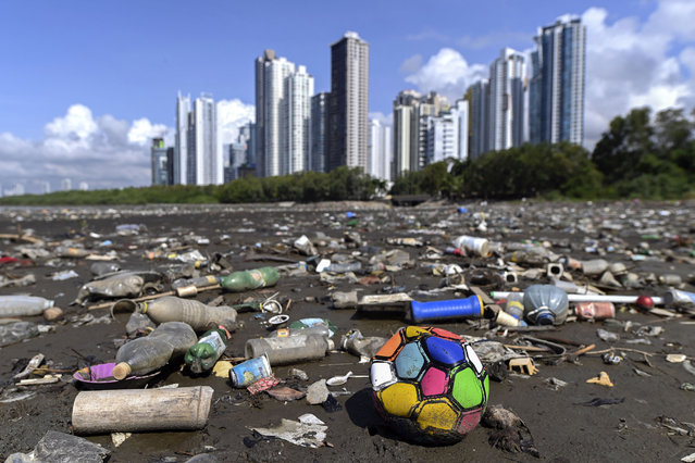 Garbage, including plastic waste, is seen at the beach of Costa del Este, in Panama City, on April 19, 2021. Every two weeks, Marine Biology students descend about five meters in the sea to take care of a coral nursery of the staghorn species (Acropora cervicornis) in Portobelo, Panama, with which they aim to restore reefs damaged by climate change and pollution, as part of the Reef2Reef project. (Photo by Luis Acosta/AFP Photo)