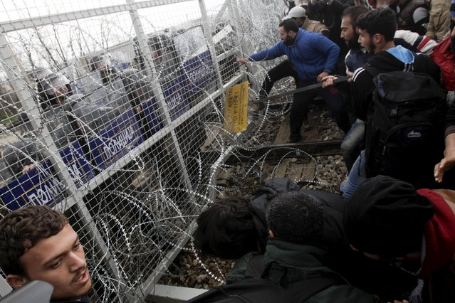 Stranded refugees and migrants try to bring down part of the border fence during a protest at the Greek-Macedonian border, near the Greek village of Idomeni, February 29, 2016. (Photo by Alexandros Avramidis/Reuters)
