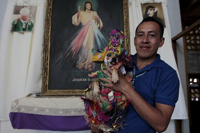 """A man and his dog called """"La Chilindrina"""" poses for pictures during a mass in honor of San Lazaro at the Magdalena church in the indigenous community of Monimbo in Masaya, Nicaragua March 13, 2016. (Photo by Oswaldo Rivas/Reuters)"""