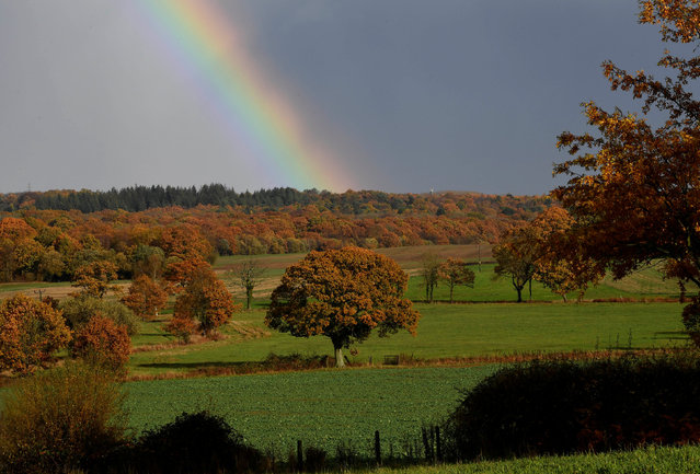 Autumn foliage is seen with a rainbow behind at North Baddesley, southern Britain November 11, 2018. (Photo by Toby Melville/Reuters)