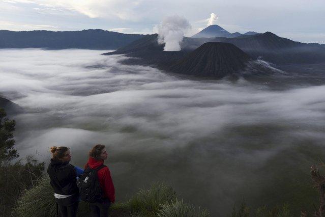 Tourists enjoy a view of  Mount Bromo from Penanjakan, Probolinggo, East Java, Indonesia March 6, 2016 in this photo taken by Antara Foto. (Photo by Zabur Karuru/Reuters/Antara Foto)