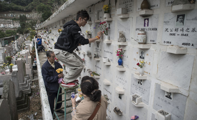 A man stands on a ladder as he cleans the area holding the urn of a loved on, at a Catholic cemetary during Ching Ming Festival, or grave-sweeping day in Hong Kong on April 4, 2013. Visiting the graves of ancestors during Ching Ming, this year marked on April 4, is an age-old Chinese tradition dating back 2000 years to the Han dynasty. (Photo by Antony Dickson/AFP Photo)