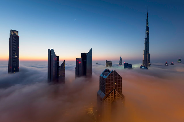 """""""Above The Clouds"""". Dubai's tallest buildings piercing through a dense blanket of fog that covered the city shortly before sunrise. Photo location: Dubai, UAE. (Photo and caption by Marcelo Castro/National Geographic Photo Contest)"""