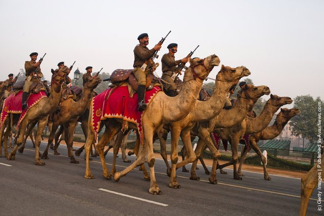 Indian soldiers mounted on camels march in preparation for the upcoming Republic Day parade