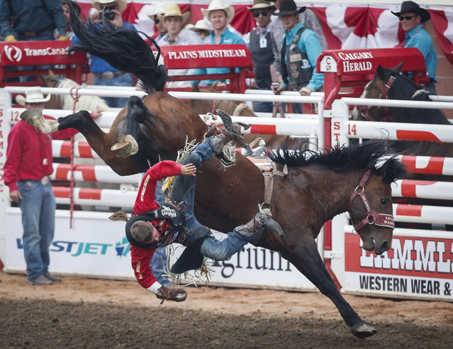 Jake Vold, of Ponoka, Alberta, is bucked off his mount during bareback rodeo finals action at the Calgary Stampede in Calgary, Alberta, Sunday, July 16, 2017. (Photo by Jeff McIntosh/The Canadian Press via AP Photo)