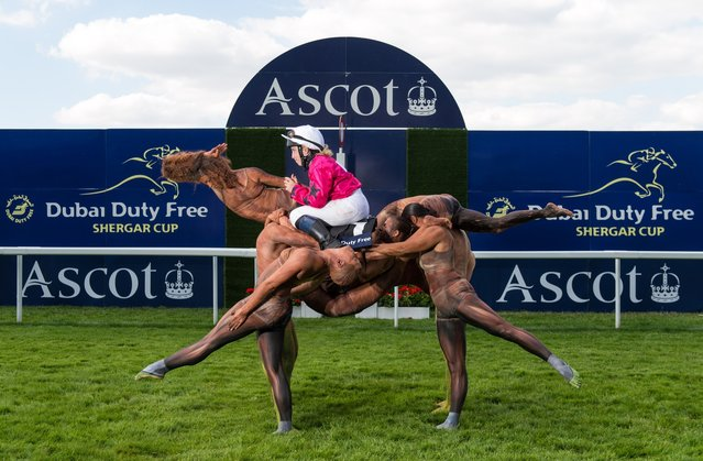 A team of ten acrobats form the shape of a racehorse crossing the winning post ridden by Stefanie Hofer to celebrate the upcoming Dubai Duty Free Shergar Cup at Ascot Racecourse on July 29, 2014 in Ascot, England. The Dubai Duty Free Shergar Cup is the only team-format raceday in the UK and takes place on 9th August. (Photo by Ian Gavan/Getty Images for Ascot Racecourse)