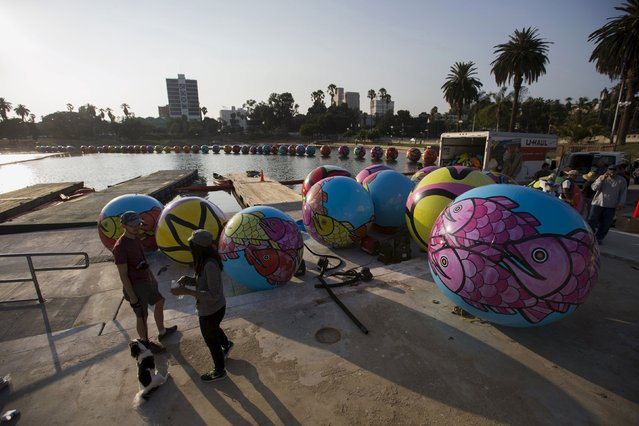"Inflated spheres are pictured before being lowered in MacArthur Park Lake during the installation of Portraits of Hope's exhibition ""Spheres at MacArthur Park"" in Los Angeles, California August 21, 2015. (Photo by Mario Anzuoni/Reuters)"