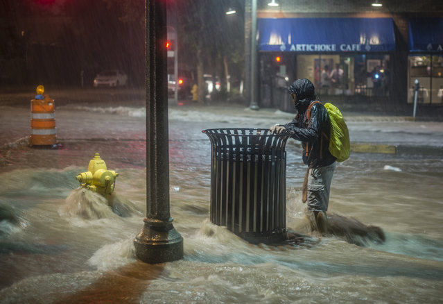 A pedestrian hangs on to a trash can along Central Avenue as rainwater flows towards downtown Albuquerque, N.M.,  Friday, August 1, 2014.  Heavy rains late Friday night caused the flash flooding and road closures in parts of downtown and in other areas.  The fire department says in a statement that crews found multiple vehicles stuck in flood waters, including one that was completely submerged. (Photo by Roberto E. Rosales/AP Photo/The Albuquerque Journal)