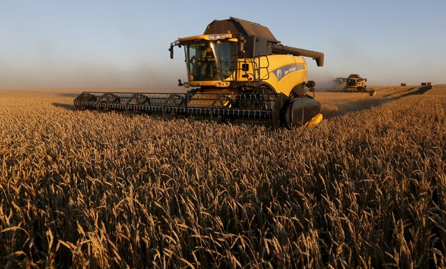 Combine harvesters work on a wheat field of the Solgonskoye farming company near the village of Talniki, southwest from Siberian city of Krasnoyarsk, Russia, August 27, 2015. (Photo by Ilya Naymushin/Reuters)