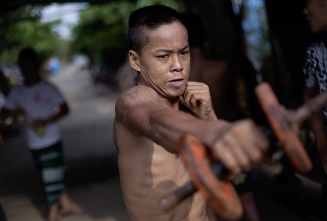 In this Wednesday, July 15, 2015, photo, a member of the White New Blood lethwei fighters club, a Myanmar traditional martial-arts club which practices a rough form of kickboxing, practices strengthening exercises during a practice session at their gym on a street in Oakalarpa, north of Yangon, Myanmar. (Photo by Gemunu Amarasinghe/AP Photo)