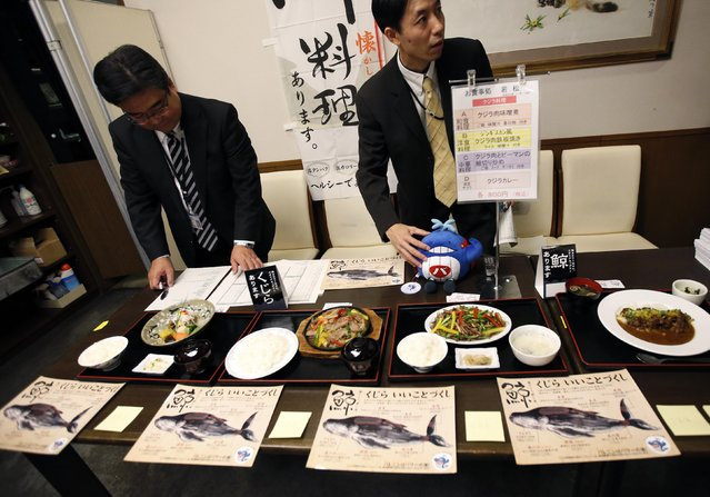 Staff members of Ministry of Economy, Trade and Industry prepare for whale meat tasting during a whale meat promotion event at a restaurant in the ministry in Tokyo November 19, 2014. Japanese government officials lunched on whale meat on Wednesday in a bid to promote Japan's new plan to resume whale hunting in the Southern Ocean, ruled out once by the International Court of Justice (ICI) earlier this year. (Photo by Issei Kato/Reuters)
