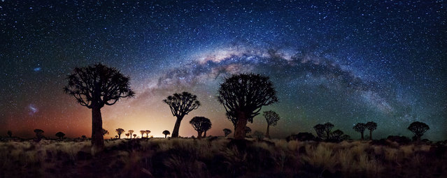 The southern winter sky shows off its best in this 240 degree view of the Milky Way behind the Quiver Tree Forest near Keetmanshoop, Namibia. Both Magellanic clouds are visible on the left, while the central bulge of our own galaxy contrasts with the warm glow of light pollution from the nearby town. (Photo by Florian Breuer/2013 Sony World Photography Awards)