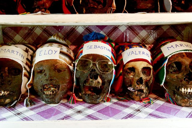Skulls are seen at a witch doctor workplace before the celebrations of The Day of Skulls in El Alto, on the outskirts of La Paz, Bolivia, November 7, 2016. (Photo by David Mercado/Reuters)