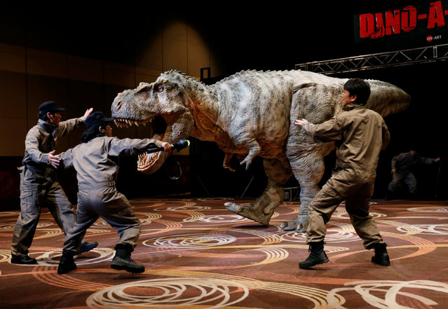 """Japan's On-Art Corp's eight metre tall dinosaur-shaped mechanical suit robot """"TRX03"""" performs during its unveiling in Tokyo, Japan November 10, 2016. Stomping and roaring dinosaurs took to the stage in Tokyo on Thursday as part of a presentation for a proposed entertainment park where visitors will be able to see the realistic replicas first-hand. Japanese firm ON-ART Corp. unveiled man-operated robotic models of raptors, an allosaurus and a tyrannosaurus rex, in a performance at a hotel hall. At one point, the t-rex even appeared to bite the head of a pretend caretaker. Around 8 meters (26 ft) high, the dinosaur replicas were modeled from fossilized skeletons and made of carbon fiber materials, according to the company. Reminiscent of the theme park seen in Steven Spielberg's blockbuster """"Jurassic Park"""" film, ON-ART Corp. CEO Kazuya Kanemaru said he wanted to create a """"DINO-A-PARK"""" where dinosaur fans could experience the creatures first-hand. (Photo by Toru Hanai/Reuters)"""