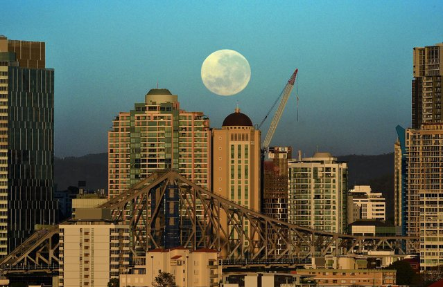 A Supermoon sets over the Brisbane skyline, Australia, early 15 November 2016. The event occurs when a full or new moon passes closer to Earth in its monthly orbit with this particular one being the closest full moon to date in the 21st century according to NASA. (Photo by Dan Peled/EPA)