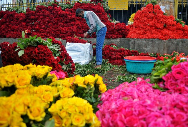 A vendor arranges roses as he waits for customers at a wholesale flower market in Bengaluru, India November 16, 2016. (Photo by Abhishek N. Chinnappa/Reuters)