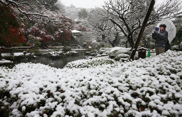 A visitor takes a photo in the snow at the Hase temple in Kamakura, near Tokyo, Thursday, November 24, 2016. (Photo by Shizuo Kambayashi/AP Photo)