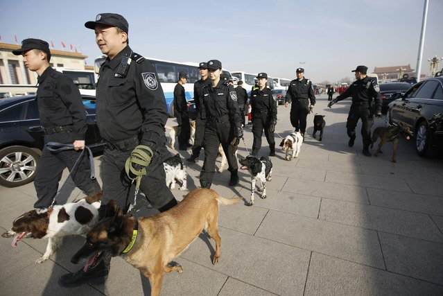 Police lead their dogs at Tiananmen Square during the closing session of the National People's Congress (NPC), or parliament, at the Great Hall of the People in Beijing March 15, 2015. (Photo by Iris Zhao/Reuters)